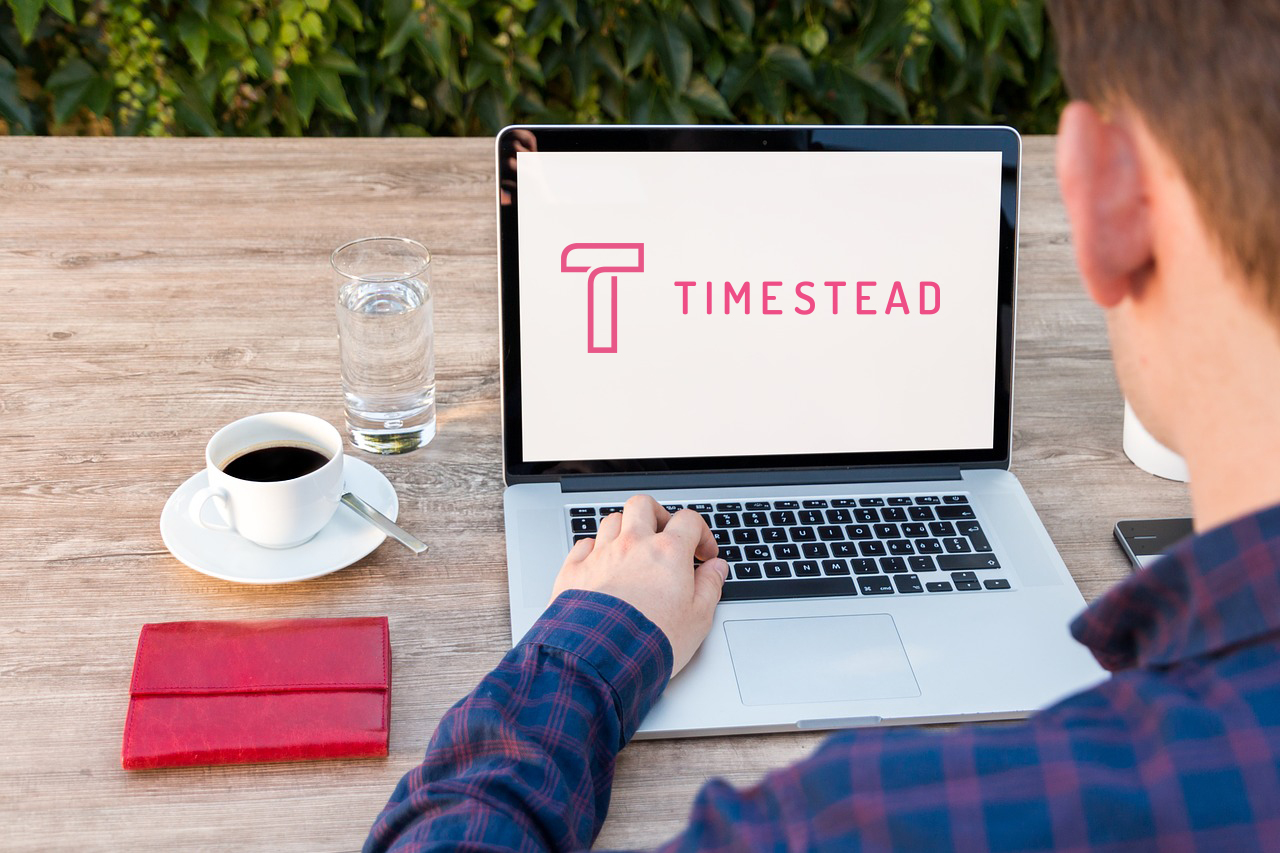 remote working - Timestead